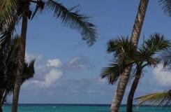 private beach resort cat island bahamas