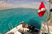 epic shark diving boat thresher