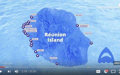 shark attacks reunion island